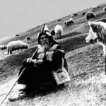 Elder Cleopa (right) Tending Sheep