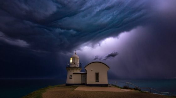 Loud Storms Surround Me, But My Heart is Tranquil: Selected Sayings of the Hieroconfessor Roman Medved